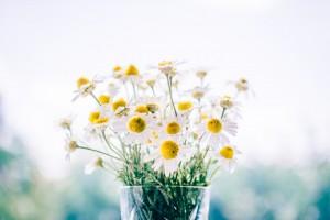 06_Blumenstrauß Margeriten